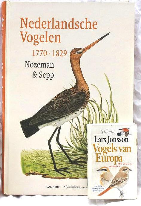originele vogelnamen