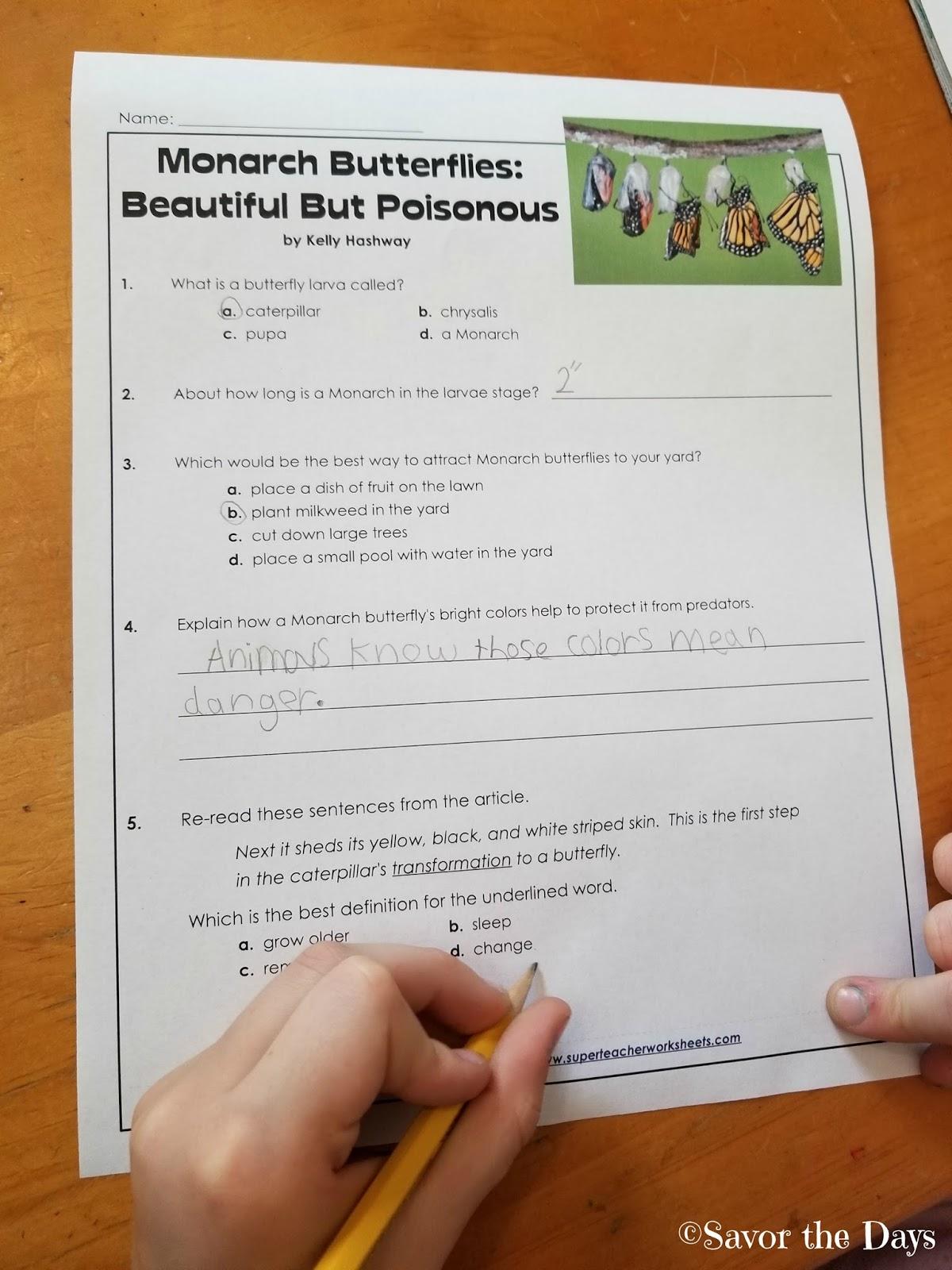 Savor The Days: Printables for Your Homeschool - Super Teacher ...