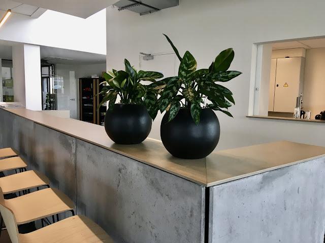 plantentoren en plantenbakken kopen in hout in polyester in kunststof in pvc in cortenstaal in beton of in steigerhout