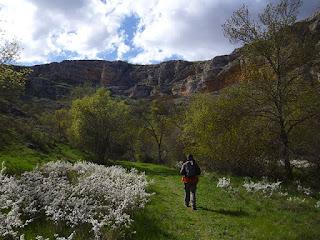 Primavera en el desfiladero del río Talegones