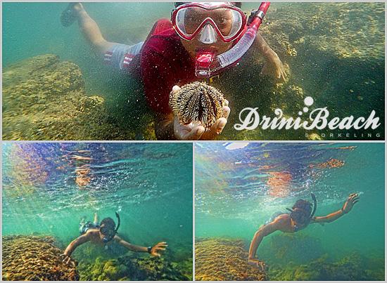 snorkeling pantai drini