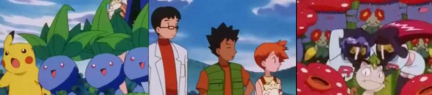 Pokemon Capitulo 30 Temporada 5 Para Donde Sopla El Viento