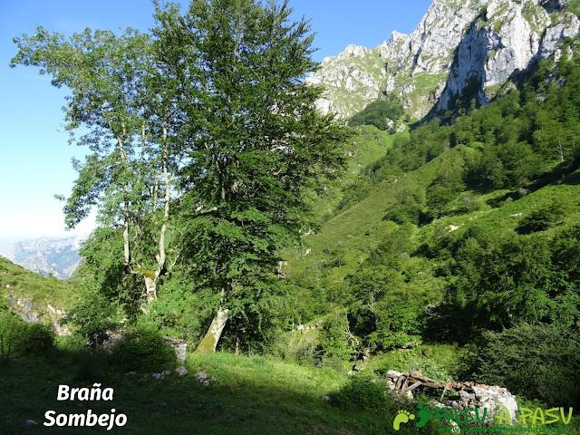 Ruta al Cueto Cerralosa y Jajao: Braña Sombejo