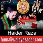 https://www.humaliwalyazadar.com/2018/09/haider-raza-nohay-2019.html