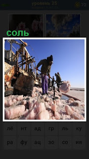 происходит уборка соли на берегу лопатами мужчинами