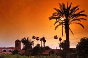 De viajeros por Marrakech 21