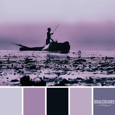 Color Paleta 145