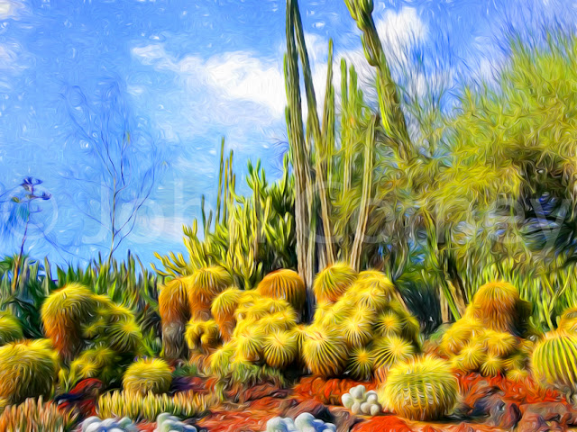 Desert Garden after Van Gogh