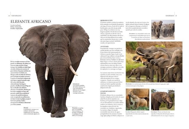 Guía Definitiva del Reino Animal 3