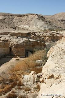 Ein Yorkeam (Negev-woestijn)