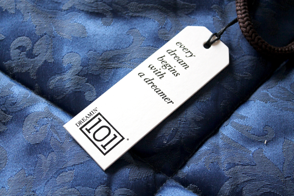 Dreamin 101 recensione blogger