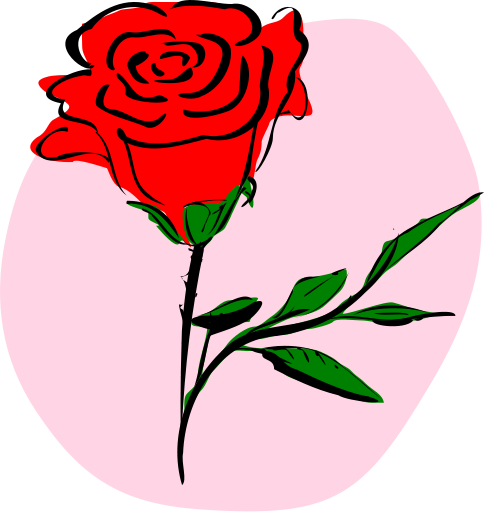 A lenda da Rosa de Natal e A lenda da Flor de Natal para contar para as crianças