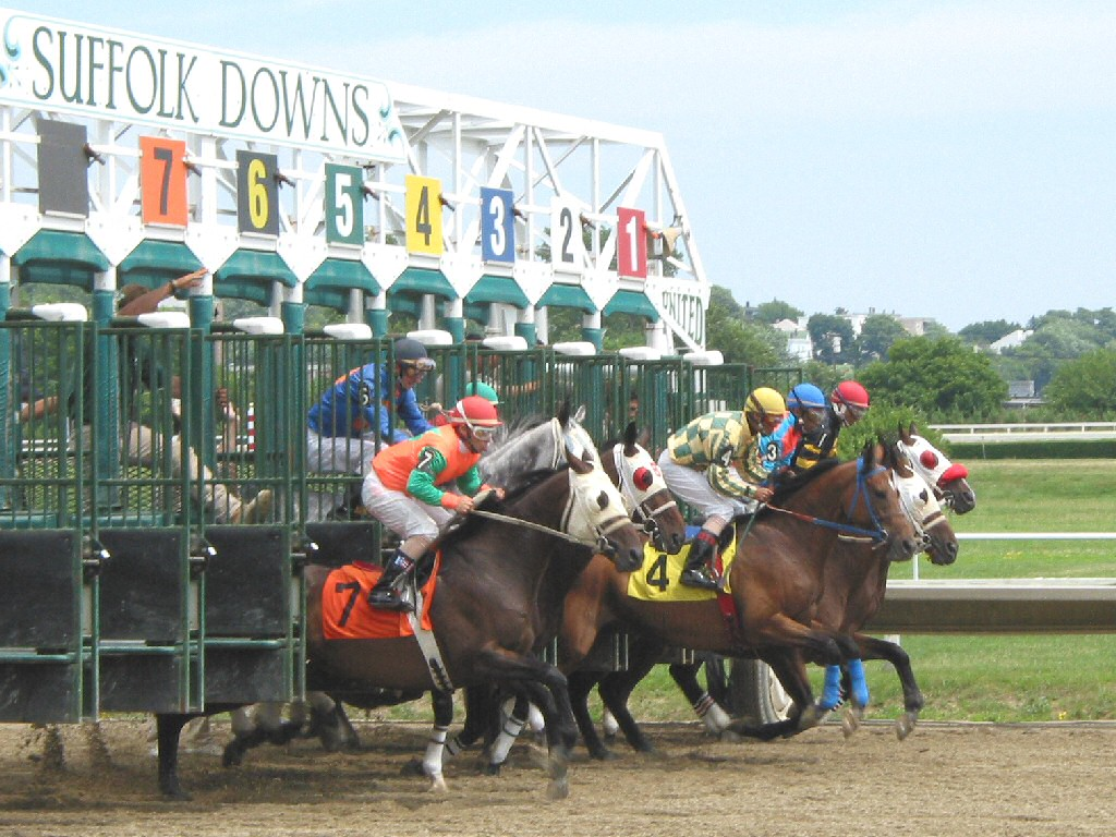 All About Horse Racing: 2011