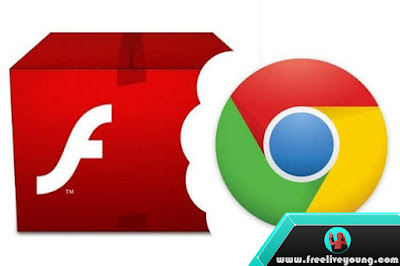 How to Running Flash in Chrome for Certain Sites