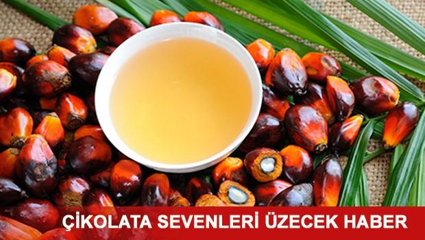 Palmiye Yağı Nedir? Hangi Besinlerde Palmiye Yağı Var?
