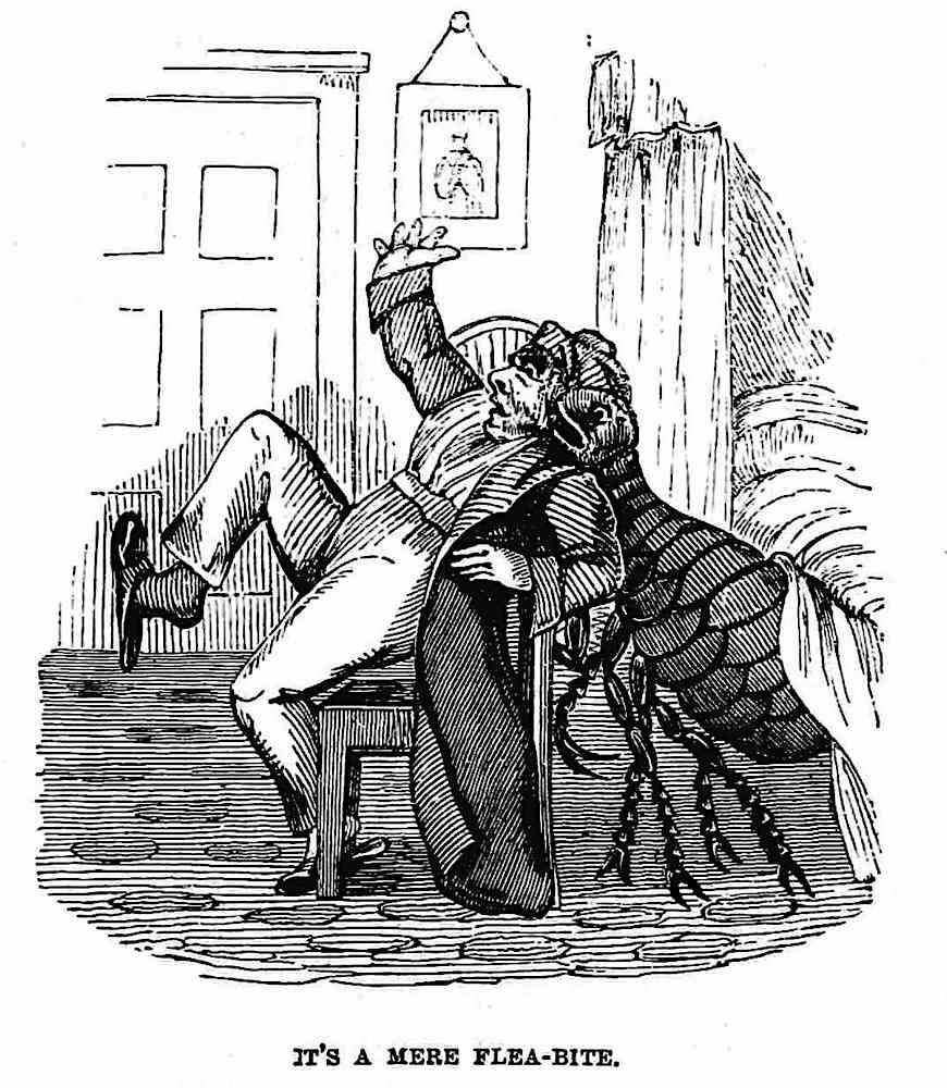 """an 1861 cartoon of a giant flea biting a man, """"It's a mere flea-bite"""""""