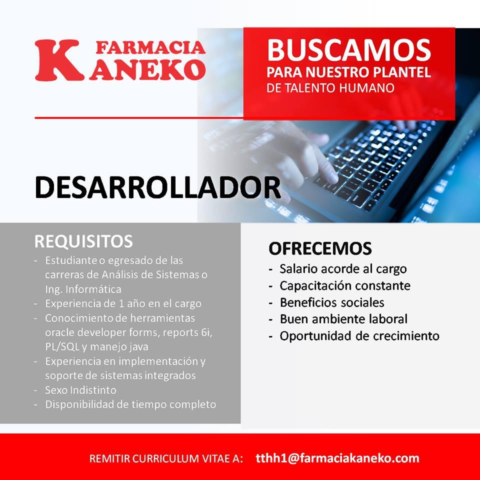 Famoso Muestra De Curriculum Vitae Para Oracle Pl Sql Desarrollador ...