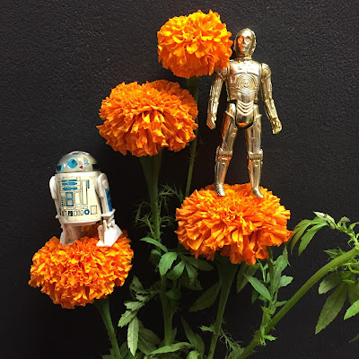 Star Wars' R2D2 and C3PO on marigolds at Stein Your Florist Co.