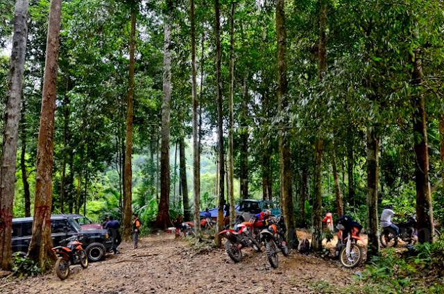Kembara Malaysia masuk hutan berangkat balik