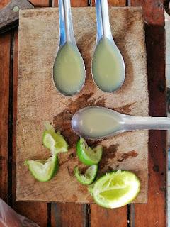 ปลูกมะนาวไร้เมล็ด
