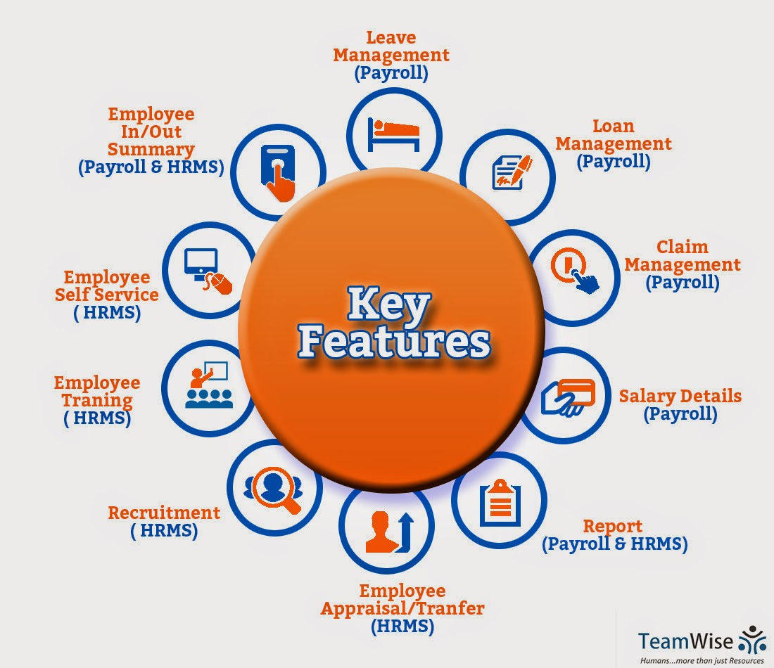 TeamWise - HR Software: Introducing the Workforce Management