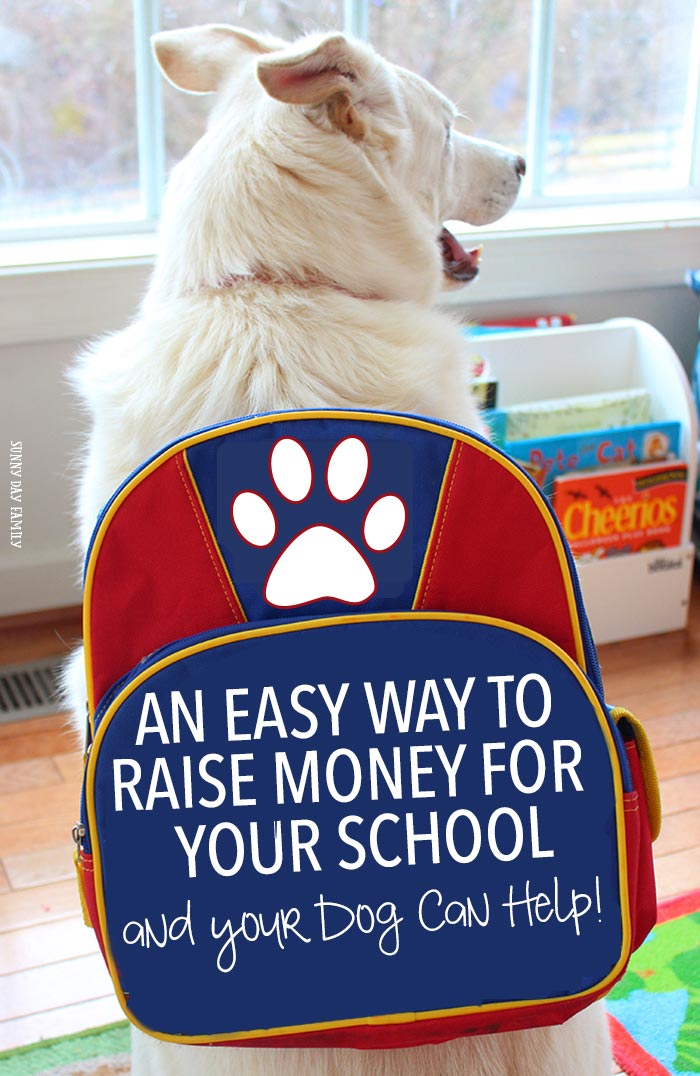 Earn money for your school and help the environment too! Learn how your dog's food can do both (and keep him healthy too). Such an easy school fundraiser idea!