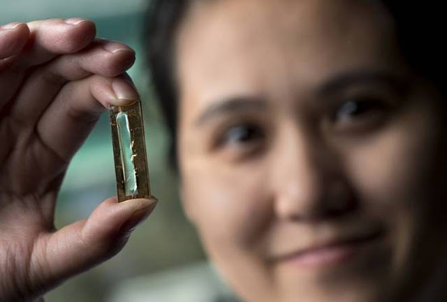 researchers-create-accidentally-long-lasting-batteries