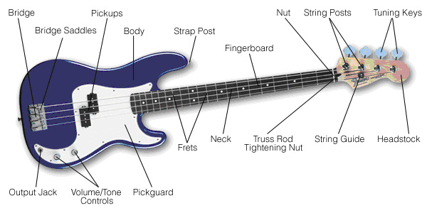 free music lessons all about music bass. Black Bedroom Furniture Sets. Home Design Ideas