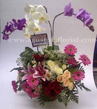 toko-bunga-surabaya-agustina-florist-jual-bunga-meja-eksotik