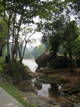 creek in Thailand: LadyD Books