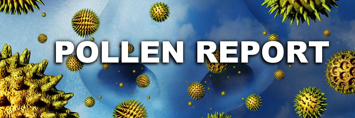 Pollen Report
