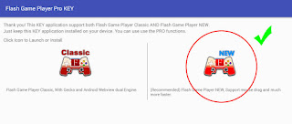 Flash Game Player New