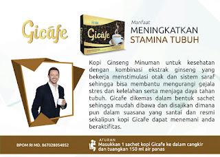 Gicafe hwi herbal