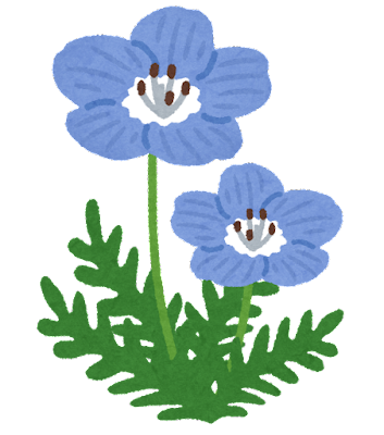 ネモフィラのイラスト(花)