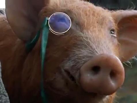 Squealer con monóculo en Rebelión en la granja - Cine de Escritor