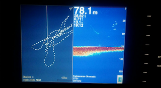 Mendeteksi lokasi keberadaan ikan