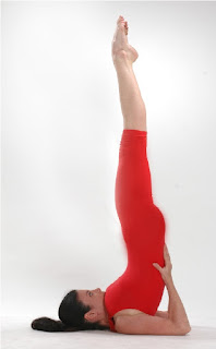 Sarvangasana helps to remove toxins and other waste products from blood and save us from many diseases related with skin.