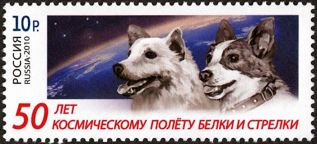 Biełka i Striełka - Pierwsi psi kosmonauci