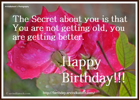 Happy Birthday, Card, Secret, about you, Getting, Better, Old, ROse Card, Birthday