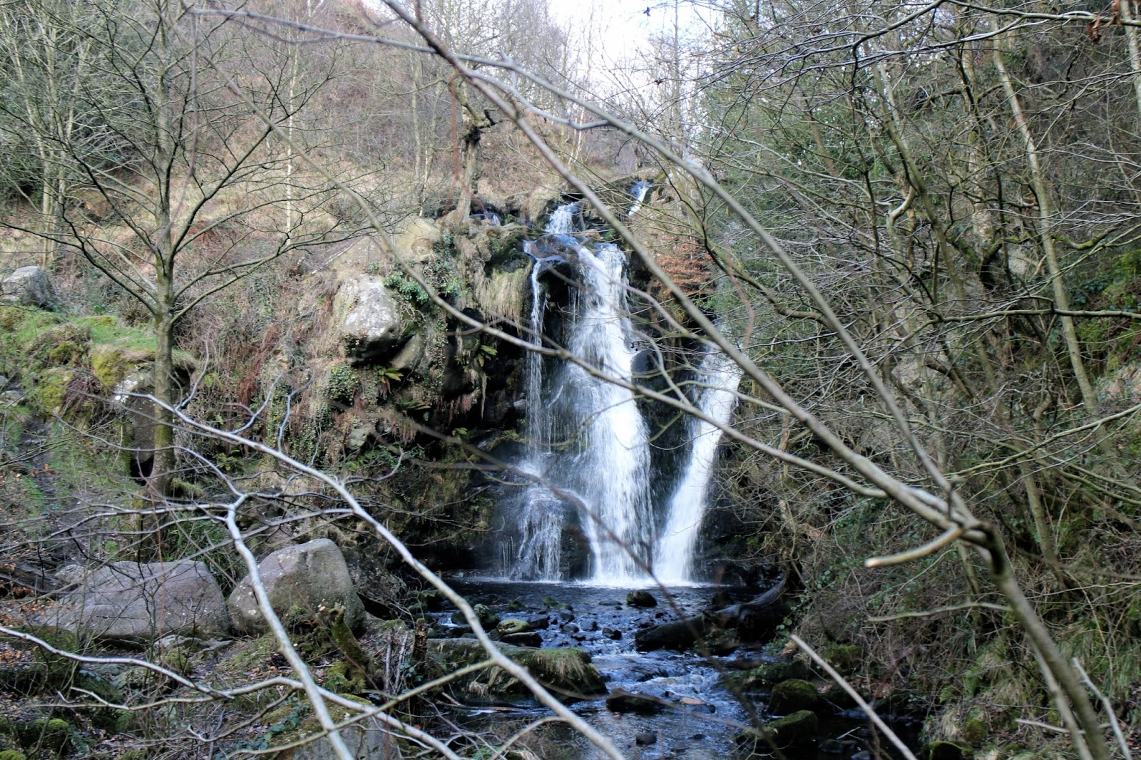 A beautiful waterfall in secluded woodland at Bolton Abbey