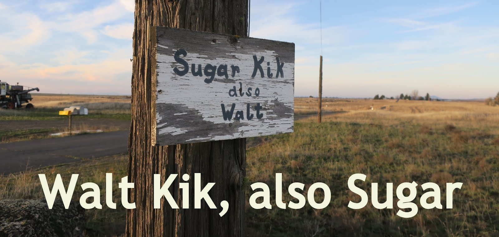 Walt Kik, also Sugar