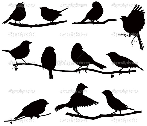 Vector Images Silhouettes Of Birds On Branch Silhouettes Bird On  Branch  Stock Vector From The Largest Library Of Royaltyfree Images