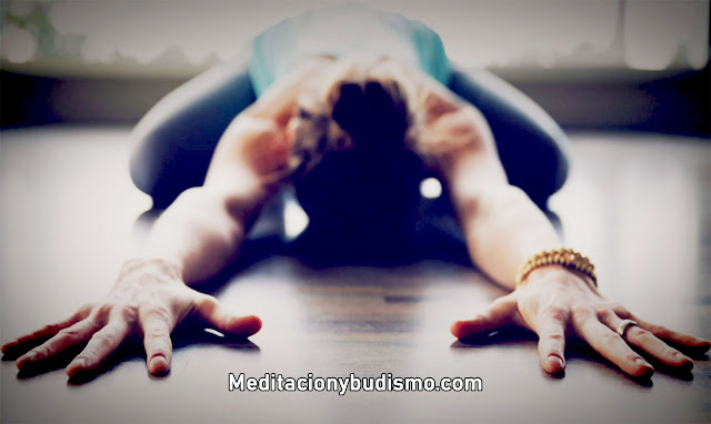 Trabaja todo el cuerpo con YOGA - Principiantes