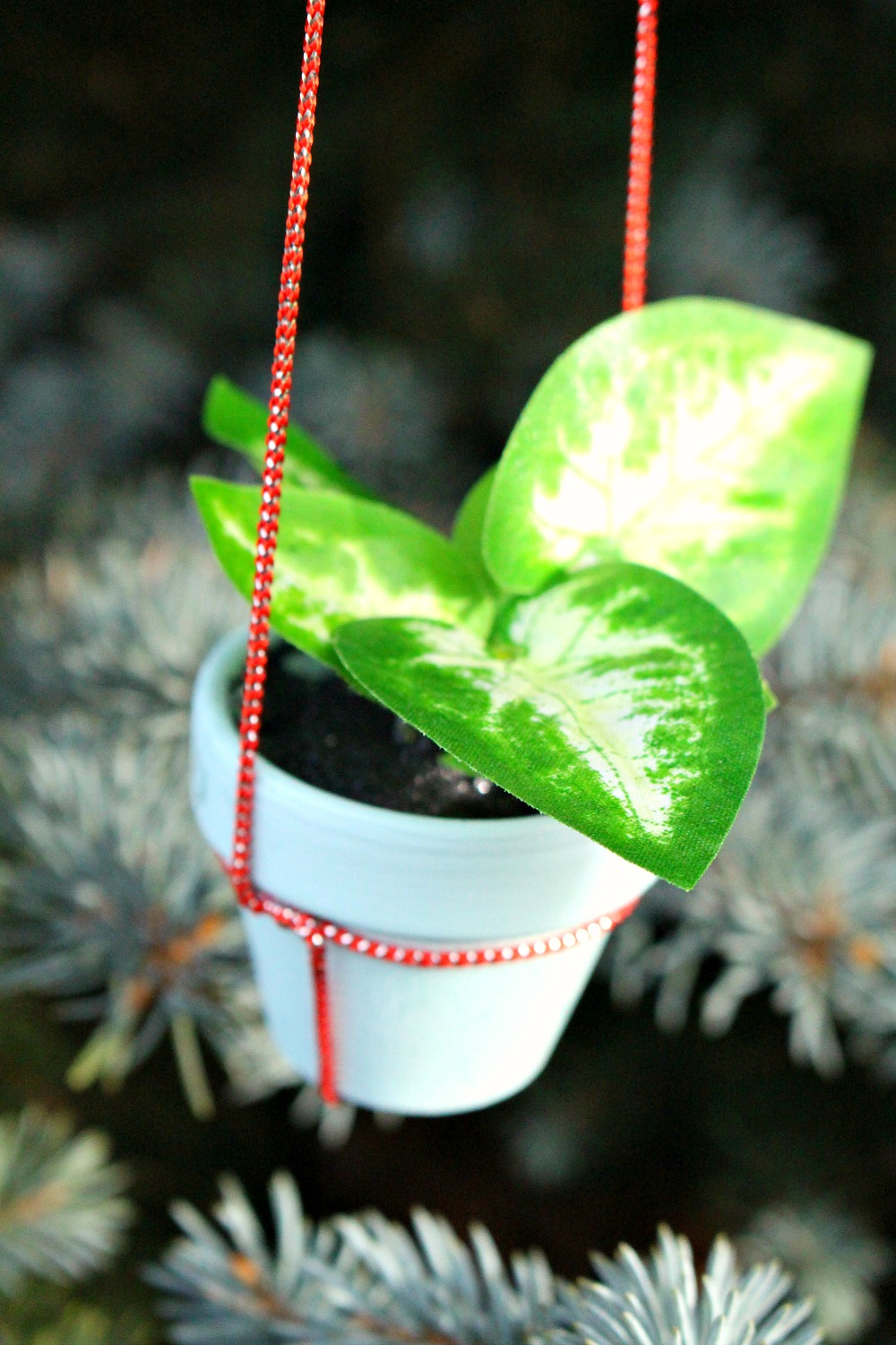 Potted Plant Holiday Ornament