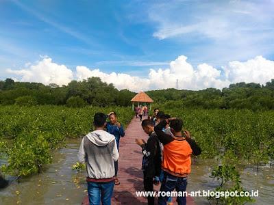 wisata mangrove rembang