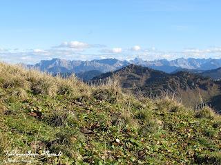 Panoramablick vom Hochgrat