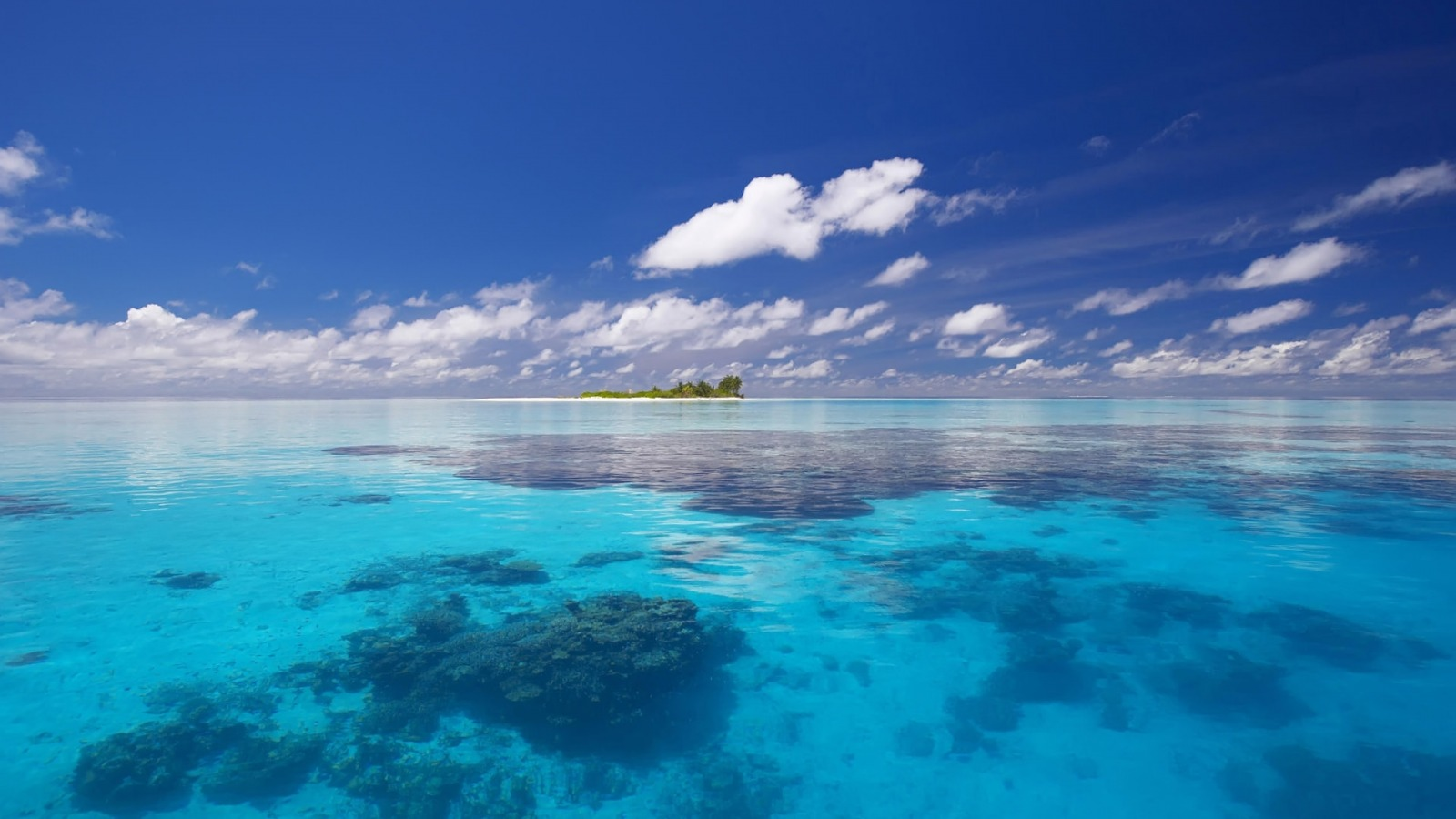 ocean nature oceans vast expanse natural beauty genesis amazing there seem while