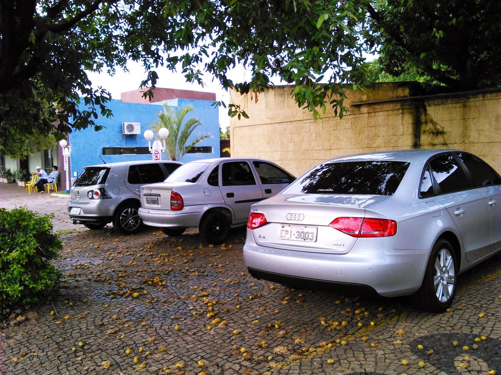 24166d8cd1e Segundo o delegado Alceu de Lima Júnior as investigações iniciadas há um  ano apontam que uma quadrilha