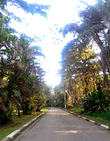 Jardim Botânico Chico Mendes