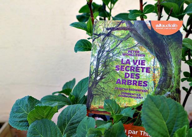 https://www.livreovert.fr/2018/05/la-vie-secrete-des-arbres.html